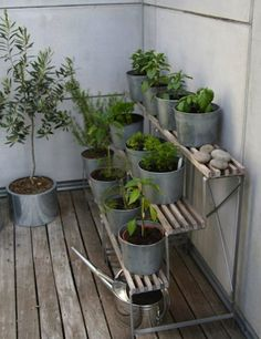 ideen balkon pflanzen ständer terrassiert kräuter gemüse