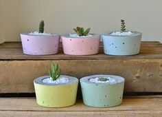By putting a unique twist on the traditional planter, we've created a vast assortment of truly one-of-a-kind, concrete pots that are perfectly suited for succulents, flowers or any style of smaller plant.  The stock-standard pots and planters you can buy from your local hardware store are all well and good, but lack a modern touch and the brave design elements that most people crave when it comes to decorating both their home and garden.  We've chosen to opt for a traditional style of…