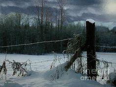 R.C. de Winter - Weeping Winter Moon