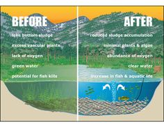 Aeration is very important for a healthy pond.