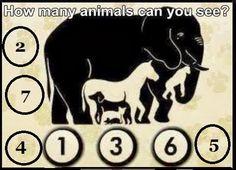 Wie viele Tiere sind zu erkennen?
