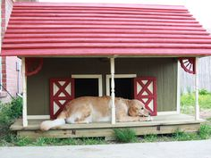 27 Innovative Doghouse Designs : This barn-style abode is a two-room duplex for sisters Greta and Gypsy. The red roof, gingerbread trim and well-built details make it a winner.  From DIYnetwork.com