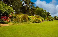 Ness gardens, Wirral, England