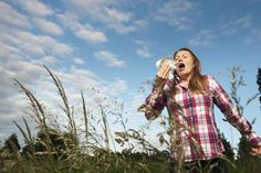 Myths about Hay Fever: What You Need to Know