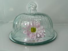 Vintage Cloche on Mirror Clear Glass Cloche with by 3sisterssmalls, $22.49