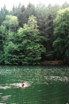 girls swimming in a lake by a forest @lolagc @ ?