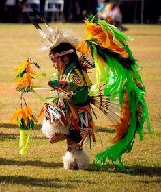 Little Pow Wow Dancer native regalia boy Native Child, Native American Children, Native American Pictures, Native American Beauty, American Indian Art, Native American History, American Indians, American Girl, Native American Regalia