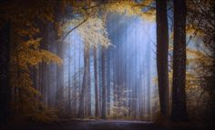 MY WORLD,ANOTHER WORLD II by Christian Wig on 500px