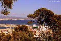 Alla maggior parte delle persone Maiorca evoca pensieri di vacanze estive e spiagge. Ai cultori di Alberto Sordi può richiamare alla mente la commedia Brevi amori a Palma di Maiorca.