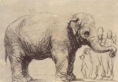 Rembrandt: An Elephant