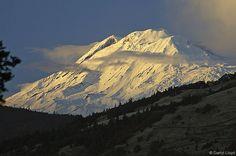 Mount Adams. Beautiful