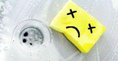Ruikt je spons naar je avondeten van gisteren? Tijd om 'm weg te gooien denk je, maar niets is minder waar!