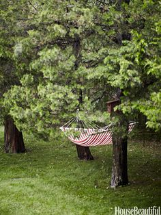 Relaxing Hammock