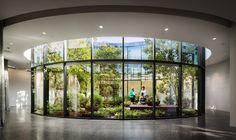 Subterranean Conservation Hall is a glass-walled atrium under the Governor's lawn in Tennessee Garden Architecture, Architecture Design, School Architecture, Indoor Courtyard, Courtyard Ideas, Vegetable Garden Planner, Patio Interior, Nature Prints, Garden Planning