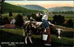 Ansichtskarte / Postkarte Westfalens Land und Leute, Landidyll, Bäuerin mit Kuh #Westfalen