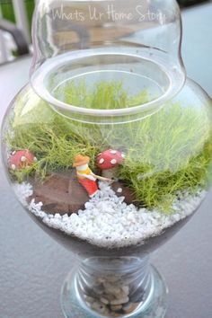 Gone fishing moss terrarium tutorial at www.whatsurhomestory.com. Could do in a mason jar too.