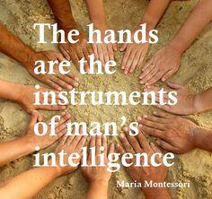 Maria Montessori - use quote for learning modalities lesson                                                                                                                                                      More