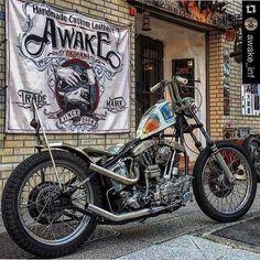 Harley Davidson Roadster, Harley Davidson Fat Bob, Harley Davidson Helmets, Harley Davidson Pictures, Harley Davidson Wallpaper, Harley Davidson Sportster, Harley Bobber, Bobber Motorcycle, Bobber Chopper