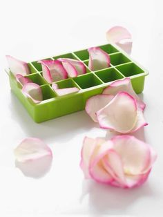 Rose Petal Ice Cubes: Great recipes and more at http://www.sweetpaulmag.com !! @Sweet Paul Magazine