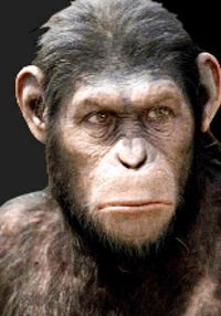 Play free slots like the Planet of the Apes slot instantly at http://www.CasinoGames.com. The Casino Games site offers free casino games, casino game reviews and free casino bonuses for 100's of online casino games. Find the newest free slots at Casinogames.com.