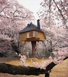 Fujimori Tea (Tree) House