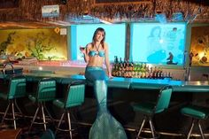Ten More of the Worlds Weirdest Restaurants You Will Want to Visit Restaurant Lounge, Giger Bar, Waterproof Tarp, Bomb Shelter, Islands In The Pacific, Air Raid, Baby Mermaid, Tree Trunks