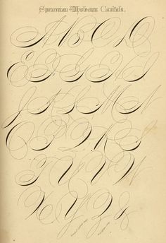 Wholearm Capitals. Spencerian Key to Practical Penmanship (1874).