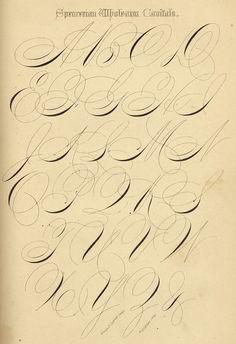 Wholearm Capitals. Spencerian Key to Practical Penmanship (1874).