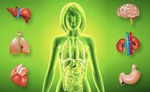 Продукты питания богатые витамином В12 - антианемический витамин, кобаламин, цианокобаламин