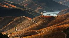 paisagem douro portugal - Google zoeken