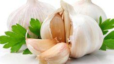 recipe for garlic soup garlic2