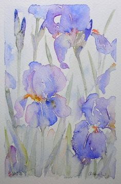 BEARDED IRISES watercolour painting original by TheMinervaGallery