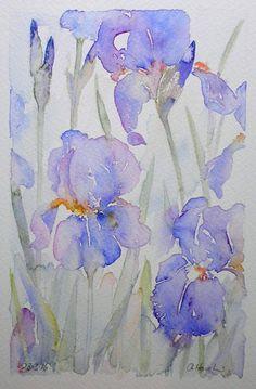 BEARDED IRISES watercolour painting original art by artist Amanda Hawkins 14 x 22cm decorative floral artwork ~ cottage garden flowers blue