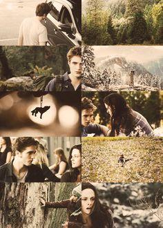 The Forever Saga Twilight Saga Series, Twilight Cast, Twilight Pictures, Twilight New Moon, Twilight Movie, Twilight 2008, Twilight Wedding, Twilight Bella And Edward, Edward Bella