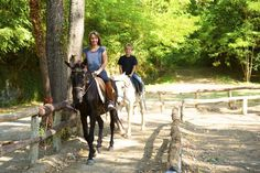 Staying Alert – How to Avoid Potential Dangers When You are Riding Your Horse