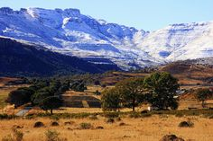 Lady Grey - South Africa Lady Grey, My Past, Zimbabwe, Its A Wonderful Life, South Africa, Mount Everest, Southern, African, Spaces