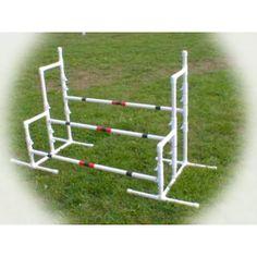 dog agility triple jump usdaa