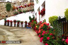Rincón de Murtas