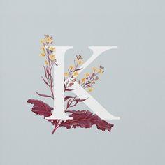 Kale // Charlotte Day
