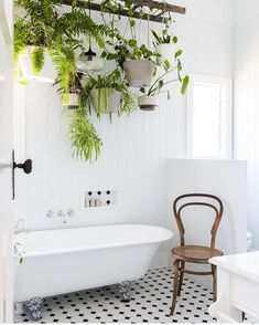 ladder above tub, bathroom