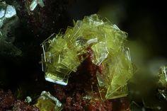 Sabugalite.  Arcu su Linnarbu, Capoterra, Sardinien, Italie Taille=1.18 mm Collection Domenico Preite / Photo Matteo Chinellato
