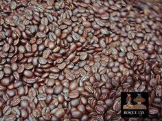 Granos de Café Bosque Lya 100% arabica, cero defectos recien tostados de clasificación Oscuro enfriándose en el área del ventilador en la maquina tostadora.  http://www.bosquelya.com/es/preparacion  Bosque Lya Coffee beans 100% arabica, zero defect classification freshly roasted Dark further cooled by the fan area in the machine toaster.