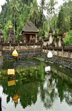 "Pura Tirta Empul is a water temple located in the village of Manukayu. The name of the temple means ""holy water spring"" in Balinese. Water Temple, Spring Water, Balinese, Ubud, Holi, Mineral Water, Balinese Cat"