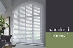 Lafayette Interiors Fashions is an industry leader in decorative window shutter manufacturing including quality plantation shutters, wood shutters, and more. Indoor Shutters, Interior Window Shutters, Interior Windows, Custom Shutters, Wood Shutters, White Shutters, Custom Curtains, Transom Window Treatments, Classic Window