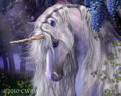 Fantasy, Unicorn - Fantasy & Abstract Background Wallpapers on . Fantasy Unicorn, Unicorn And Fairies, Unicorn Horse, Unicorns And Mermaids, Unicorn Art, Fantasy Art, Unicorn Painting, White Unicorn, Magical Unicorn