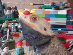 Playing with legos and my bearded dragon Blackbeard http://ift.tt/29T6haO
