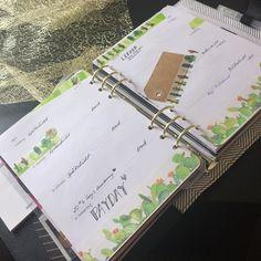 Hier ist sie meine aktuelle Woche. Ich liebe sie  #washi #washilove #washitape #washiaddicted #filo #filofax #filoanna #filolove #filofaxen #filoaddicted #planner #planwithme #green #week #kaktus by filoanna_