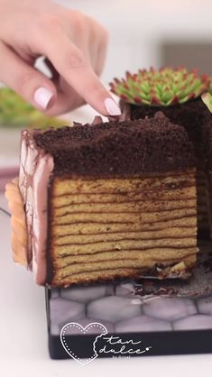Succulents Cake – Cake Decorating Tutorial – Cakes and cake recipes Cake Decorating Videos, Cake Decorating Techniques, Cookie Decorating, Beautiful Cakes, Amazing Cakes, Cake Recipes, Dessert Recipes, Cake Tutorial, Creative Cakes
