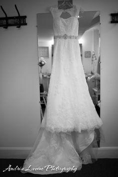 Andria Lavine Photography - www.alavinephotography.com