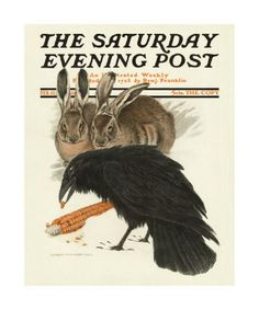 Saturday Evening Post cover by Charles Livingston Bull, February 17, 1916